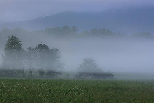Smoky Morning by Steve Hucks