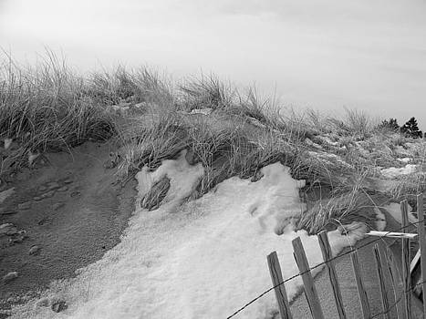 Snow Covered Sand Dunes by Eunice Miller