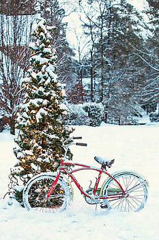 Snow in Georgia by Donna Vasquez
