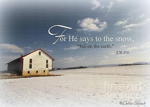 Snow Fall by Debra Straub
