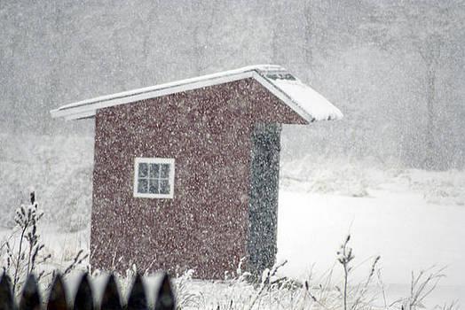 Snow Storm by Donna Desrosiers