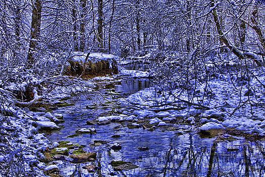Snowy Creek by Gene Linzy