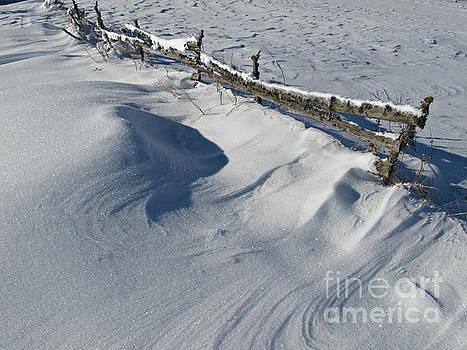 Snowy Winter Scene Detail by Kiril Stanchev