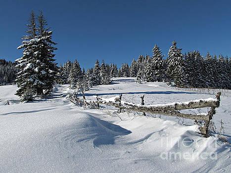 Snowy Winter Scene by Kiril Stanchev