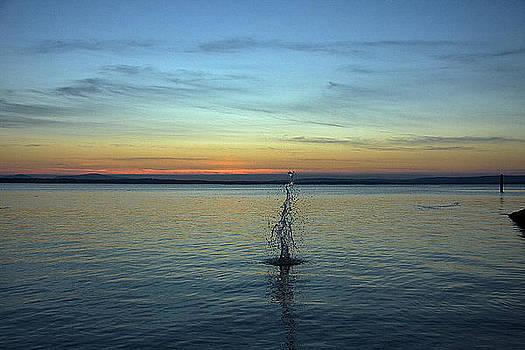 Splash at sunset 4 by Tony Reddington
