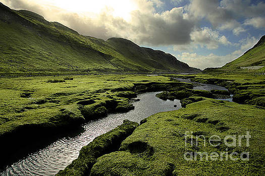 Spring in Scotland Valley by Matt Tilghman