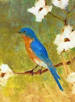 Springtime Bluebird by Robert Stump