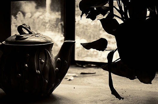 Still Life - Tea Pot and Plant by Steve Raley
