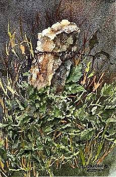Stone Post with Gourd Vines by Lynne Wright