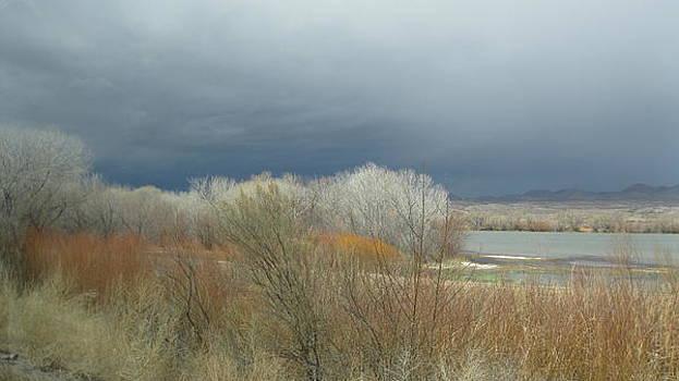 Storm Over Pond by Christina LeClerc