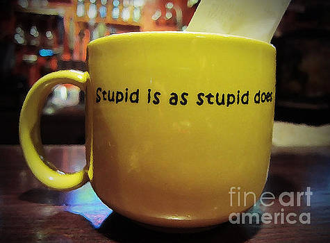 Stupid is... by Marguerita Tan