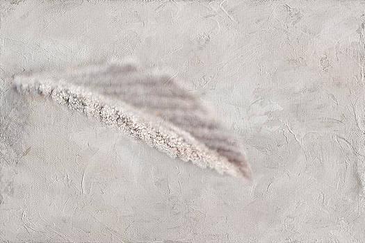 Sugar Crush by Michelle Ayn Potter