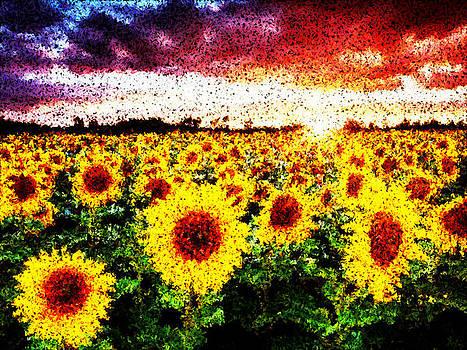 Sunflower by Bob Frase