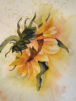 Sunny flower by Carol Bruno