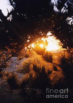 Sunrise In Monument Valley Utah by Rita Miller