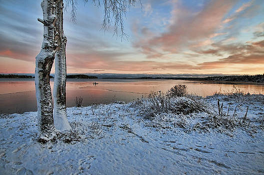 Sunrise by Tage Persson