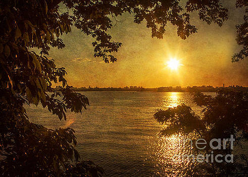 Sunscape by A New Focus Photography