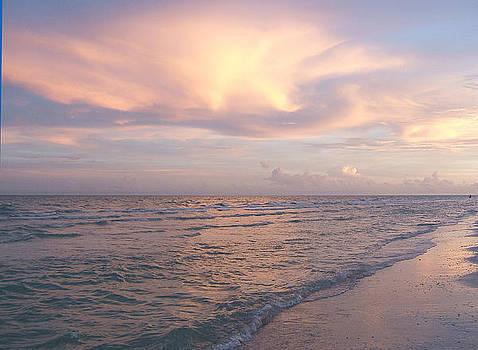 Sunset on Sanibel by Rosie Brown