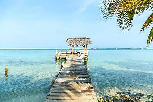 Take a walk in Paradise by Tyler Olson