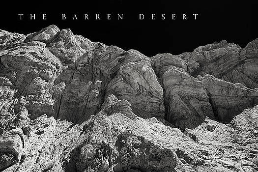 The Barren Desert by Lawrence Brillon
