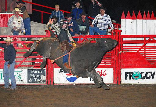 The Bull Rider by Larry Van Valkenburgh