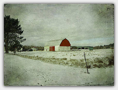 The Farm In Winter  by Dianne  Lacourciere