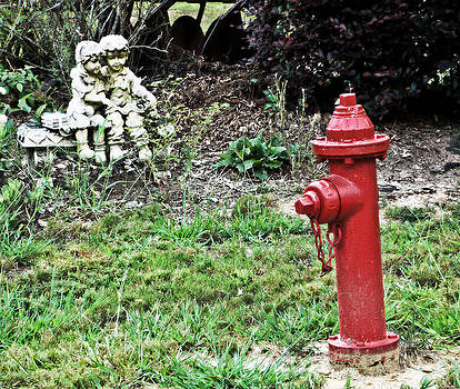 The Fire Hydrant by Regina McLeroy