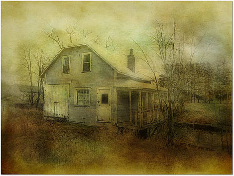 The Forgotten House  by Dianne  Lacourciere