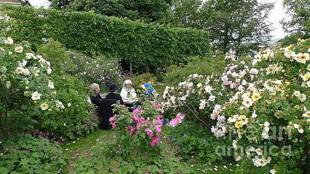 The Garden Society by Leif Sodergren