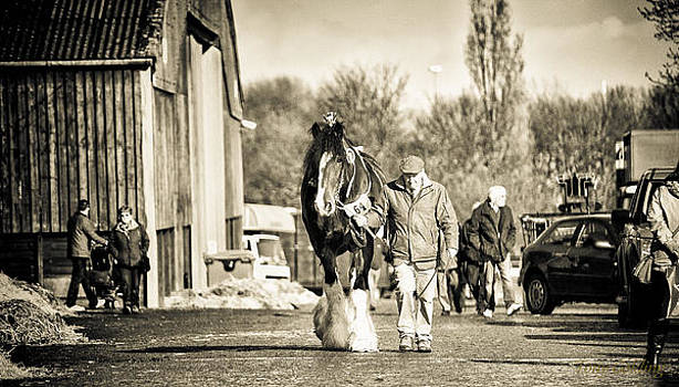 The Long Walk by Tony  Golding