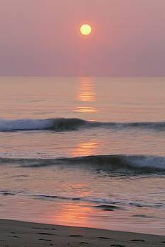 The Low Sun Shines As Waves Break Onto by Steve Winter