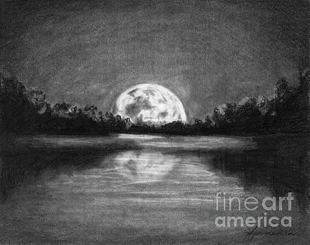 The Night Walked Down The Sky by J Ferwerda