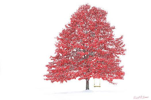 The Oak Tree by David Simons