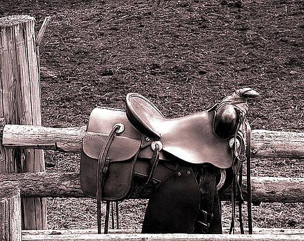 The Saddle by Doug Fredericks