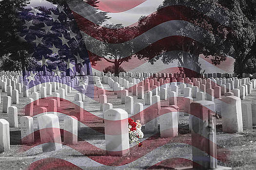 They gave their lives by Jackee Swinson