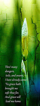 Thro' many dangers by Sybil Conley