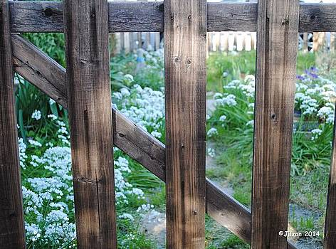 Through the Garden Gate by Jill Baum