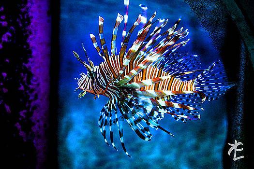Tiger Stripes by Kelly Clower