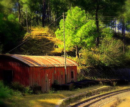Train Shed by Salman Ravish