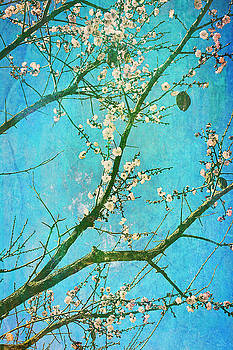 Tribute to Van Gogh's Almond Blossoms by Arkamitra Roy