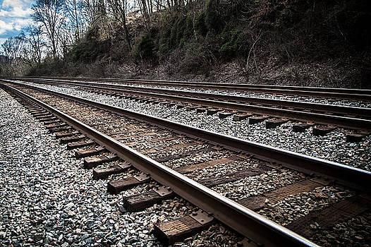 Triple Tracks by Lee Wellman