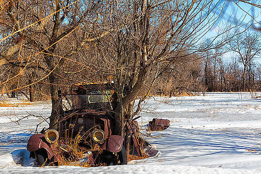 Two Trees And An Automobile by Christy Patino