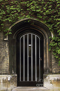 Typical Old English Entrance door with ivy by Kiril Stanchev