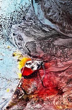 Underworld Feeding Ground by Petros Yiannakas