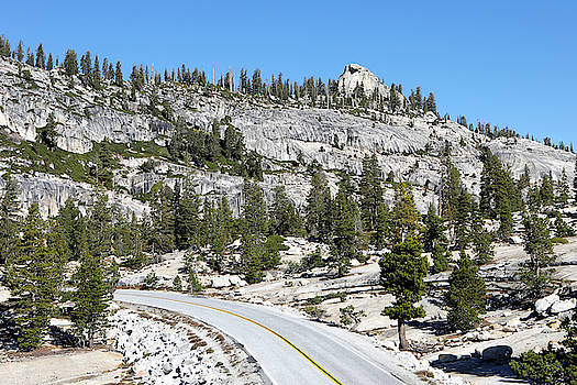 View Of Tioga Road On The Way by Jill Schneider