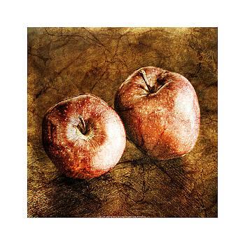 Vintage Apples by Craig Tinder
