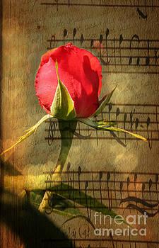 Vintage Love Story Symphony by Judy Palkimas