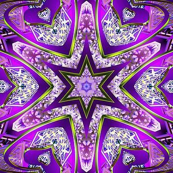 Violet Fury by Derek Gedney