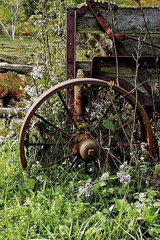 Wagon Wheel by Bruce Colin