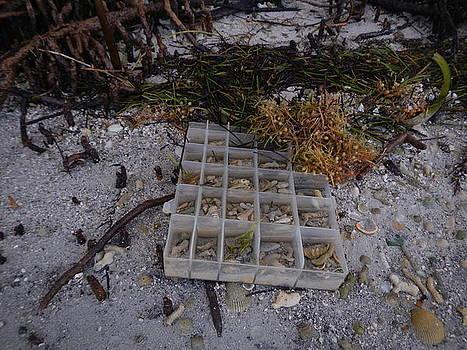 Washed Ashore by Susan Sidorski